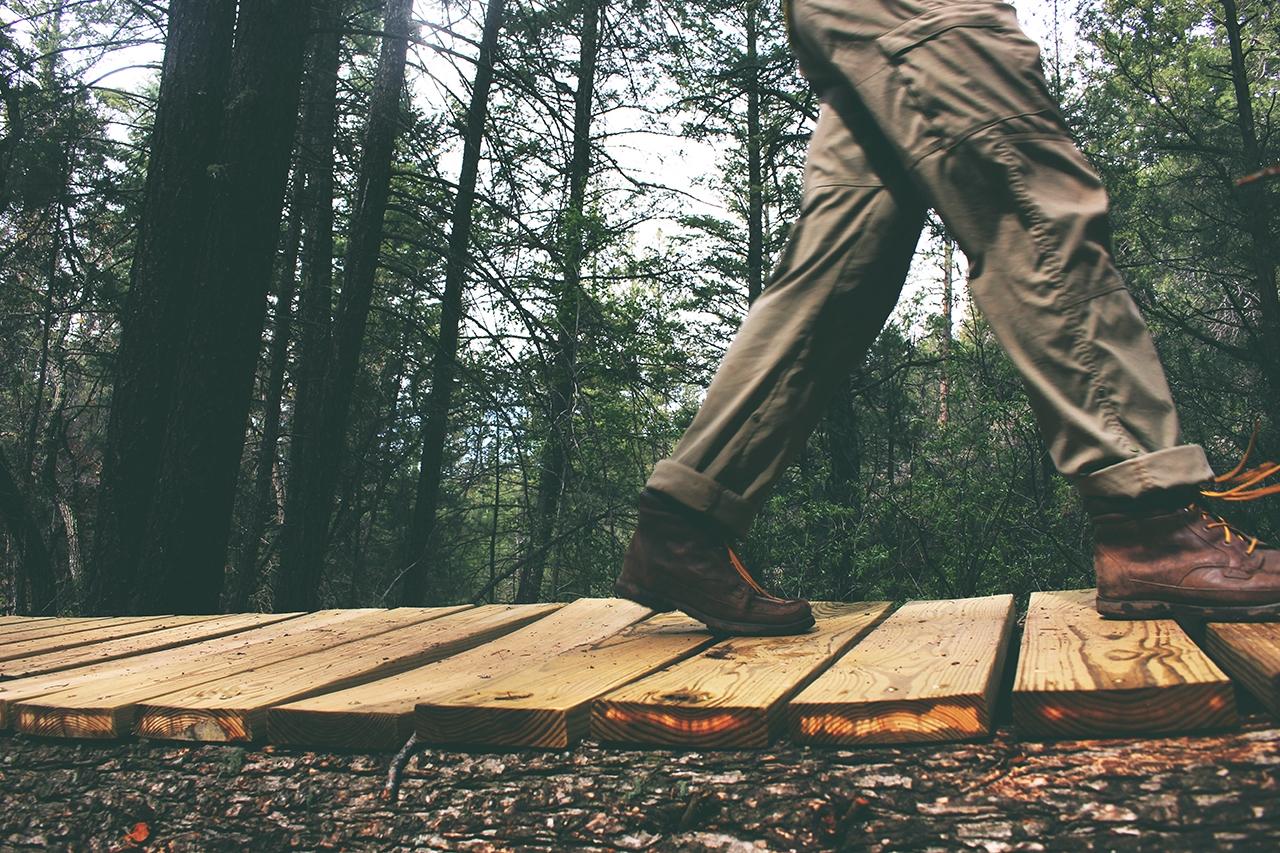 wood-path